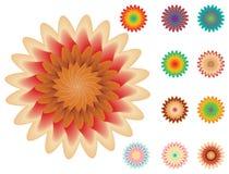 planlägg blom- din setwhite för element Royaltyfri Bild