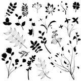 planlägg blom- element vektor illustrationer