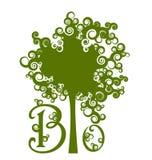 planlägg ecohuset Royaltyfri Illustrationer