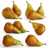planlägg många pears Royaltyfri Bild