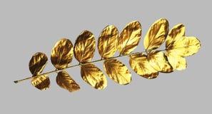 Planlägger realistisk moderiktig guld målade sidor för inbjudan royaltyfri illustrationer