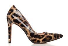 Planlägger skor för höga häl för stilett i djurt tryck, med den höga hälet Royaltyfri Fotografi
