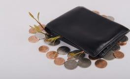 Planläggning och investering för begrepp finansiell Arkivbild