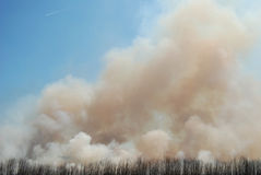 A planned controlled day burn with smoke. Filled blue skies stock photography