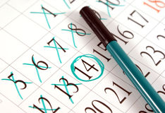 Planner. Appointment concept:calendar and pen Royalty Free Stock Photos