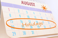 Planning summer holidays royalty free stock photography