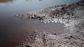 Plano cinemático do close-up da terra seca imediatamente depois da chuva vídeos de arquivo