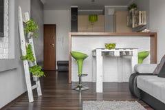 Plano cinzento com detalhes verdes Foto de Stock Royalty Free