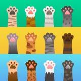 Plano da pata dos gatos As patas do gato agarram a mão, animal bonito dos desenhos animados, caçador selvagem engraçado da pele C ilustração royalty free