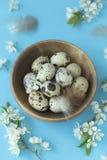 Plano-endecha de huevos y del flor sobre el fondo en colores pastel azul claro, visión superior con el espacio para su texto imagen de archivo libre de regalías