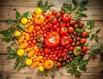 Plano-endecha de tomates maduros coloridos frescos foto de archivo libre de regalías