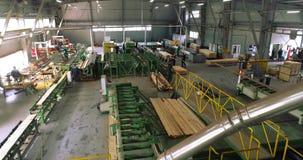 Plano geral da serração moderna, muito pessoa que trabalha em uma fábrica de woodworking filme