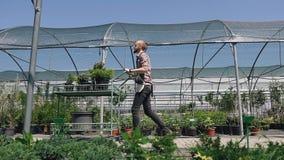 Plano geral, vista lateral Um jardineiro em um avental no fundo de uma estufa, com a ajuda de um transporte do jardim video estoque