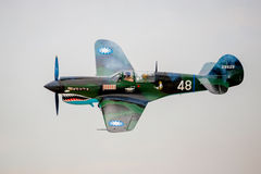 Plano P-40 Warhawk da guerra WW2 Foto de Stock Royalty Free