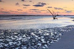 Planos de fango costeros Fotografía de archivo libre de regalías