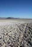 Planos de fango secados de la sal Fotos de archivo libres de regalías