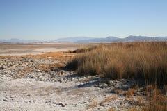 Planos de fango secados de la sal Fotografía de archivo libre de regalías