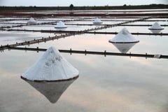 Planos de la sal en Asia Imagenes de archivo