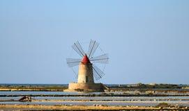 Planos e moinho de sal Foto de Stock Royalty Free