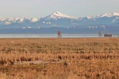 Planos e montanhas do delta Fotos de Stock
