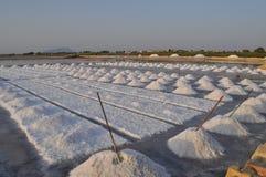 Planos salinos de la sal en marsala Imagen de archivo libre de regalías