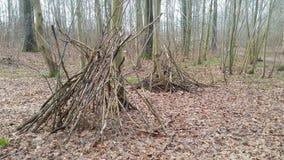 Planque dans le bois Photo libre de droits
