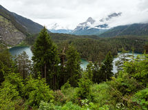 Plansee summer landscape (Austria). Royalty Free Stock Photo