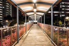 Planskild korsningbrosikt på natten Arkivfoton