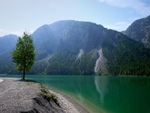 Plansse lake and Alps mountain Royalty Free Stock Photos