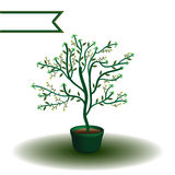 Plant arrow direction Stock Photos