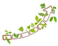Plant arrow Stock Image