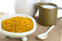 Plant based  organic bees pollen, Royalty Free Stock Image