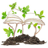 Plant Book Stock Photography