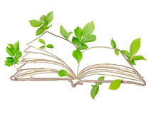 Plant Book. Plants with leaves forming book isolated on white Royalty Free Stock Image