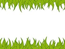 Plant border. Green plant/grass border over a white background Stock Photography