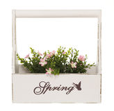 Plant Box with pink Flowers. White flower box titled Spring with artificial pink flower plant, isolated on a white background Royalty Free Stock Image