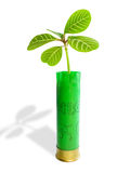 Plant and bullets. Royalty Free Stock Image