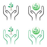 Plant care. Illustration of plant care concept on white background Royalty Free Stock Image