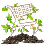 Plant Cart Stock Photography