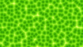 Plant cells computer generated seamless loop animation stock video