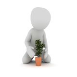 Plant 2. A character is planting a plant in a pot Stock Image