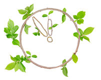 Plant Clock Royalty Free Stock Images