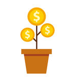 plant with coins money Stock Photography