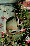 Plant covered drinking fountain Royalty Free Stock Photos
