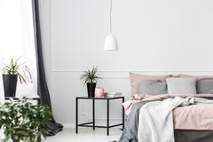 Plant in cozy bedroom interior. White lamp above black table with plant in cozy bedroom interior with pink bedding and grey pillows on bed stock images