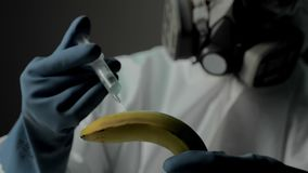Plant or crop production. Research of fruits and vegetables in modern laboratories. Scientist in fully protective stock video footage