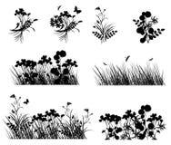 Plant design Stock Images