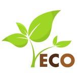 Plant eco icon Stock Photo