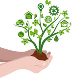 Plant with ecology icons. Hands hold the tree with environmental icons Stock Image