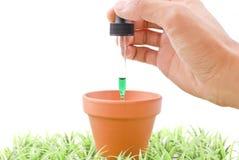 Plant Experiments Stock Photos